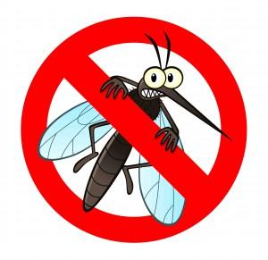 Chasse aux Moustiques